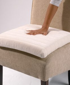 Back Care and Cushions
